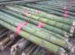 6-10米大棚竹竿,疙瘩竹